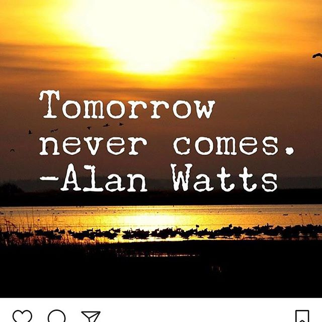 There is only today. This quote gave me a needed kick up the arse this morning  #healthy #fitness #fitspo #reiki #meditation #gothic #grateful #gratitude #yoga #yogagifts #healthy #healing #happiness #lifequotes #livefortoday #psychic #spirituality #crystals #crystalhealing #vegan #jewellery